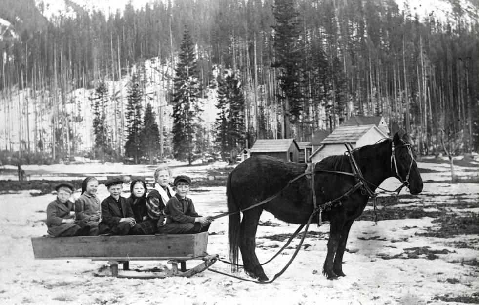 Six children in horse-drawn sled.