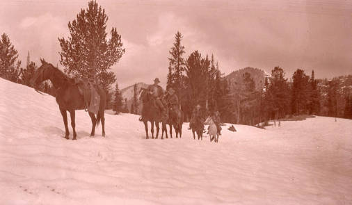 Image of Horseback ride in the snow [01]