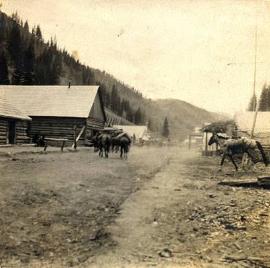 Image of Village of Roosevelt, Idaho [02]